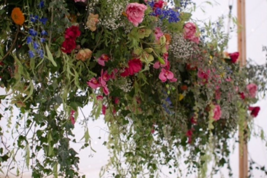 ladder flowers
