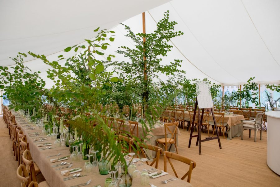 cross-back chairs in Traditional Canvas Marquee